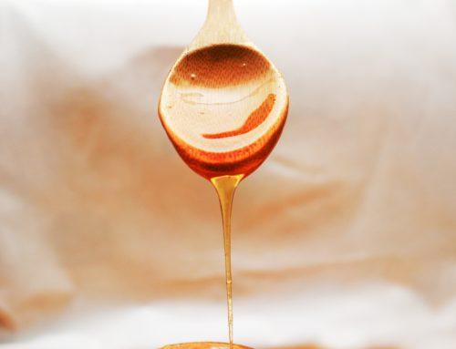 Welke omega olie kun je het beste kiezen?