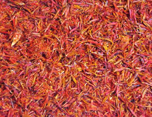 Saffraan als medicijn: de geschiedenis van saffraan als geneeskrachtige plant