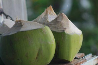 Verse kokosnoten met kokoswater