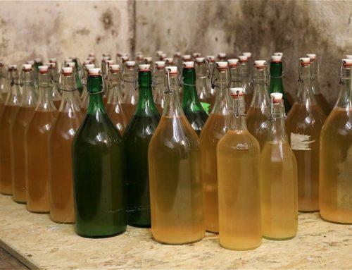 8 manieren om appelazijn of wijnazijn te gebruiken. Ontdek…