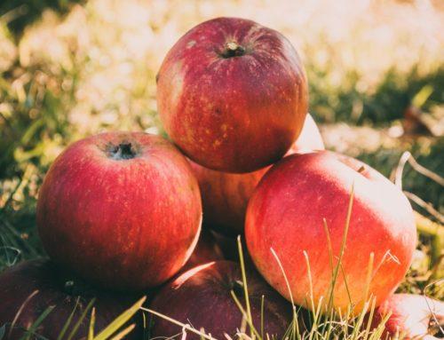 4 Richtlijnen voor het kiezen van een gezonde appelazijn.