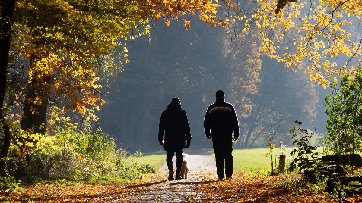 walking for health in combination with coconut oil